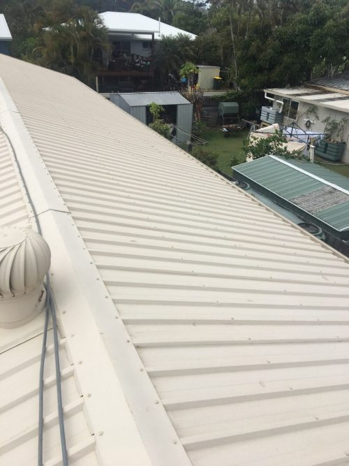 cotton-tree-roof-before